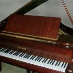 polonus-2