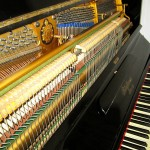 pianino-bluthner (10)