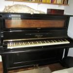 pianino-bluthner