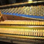 pianino-bluthner (3)