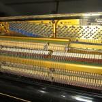pianino-bluthner (4)