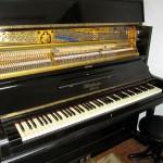 pianino-bluthner (5)