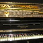 pianino-bluthner (6)