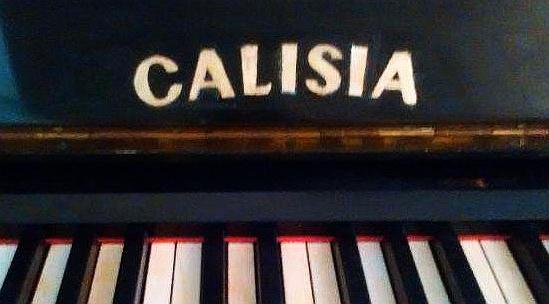 Calisia-1