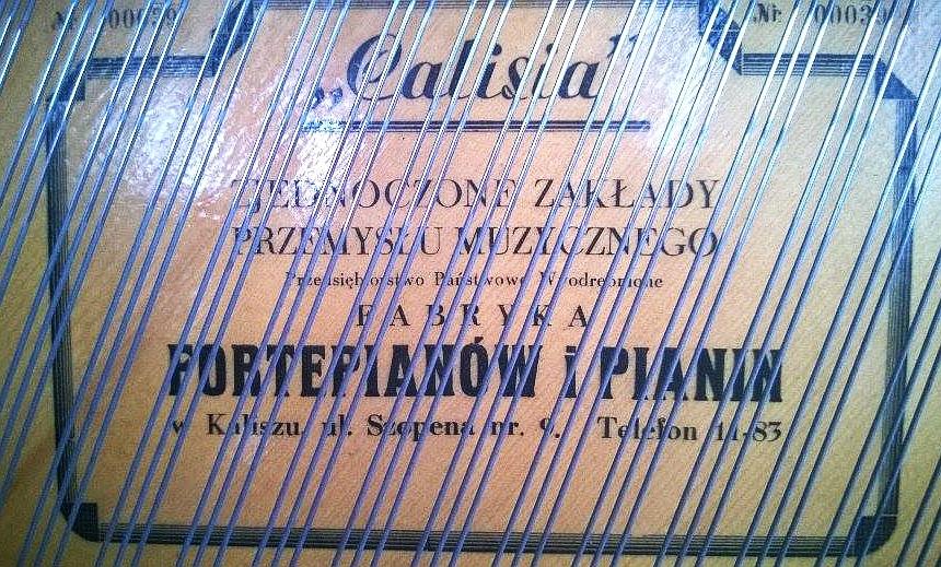 Calisia-2