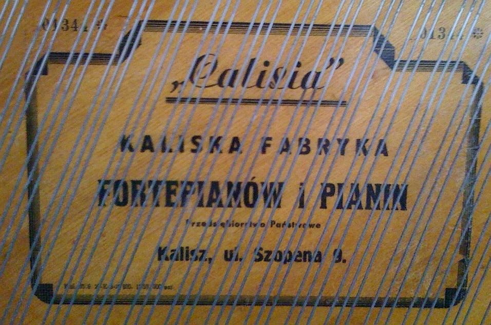 Calisia-6