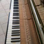 pianino-grotrian-3-5