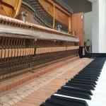 pianino-grotrian-3-6