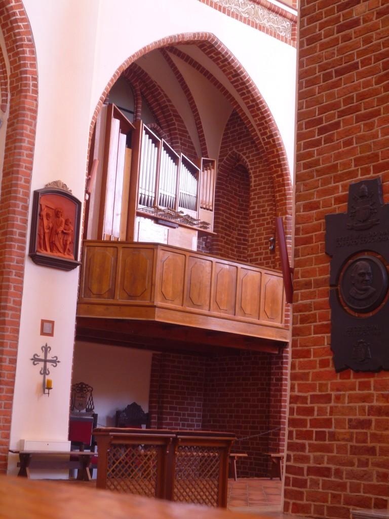 13-Szczecin-Katedra-małe-organy-1